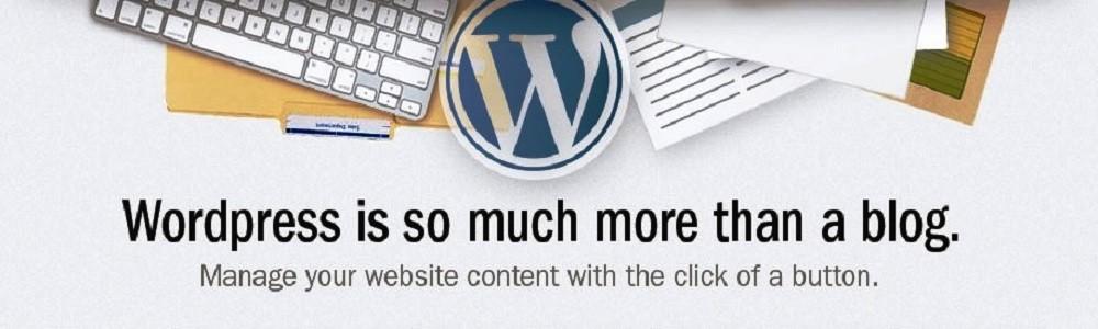 wordpress web design - more than a blog
